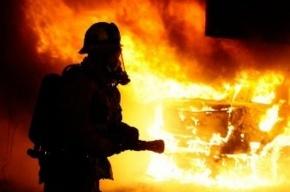 Иномарка сгорела в Колпинском районе