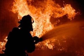 Двух человек эвакуировали из горящего дома на Комендантском проспекте
