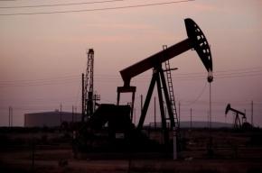 Нефть марки Brent подорожала до $50,17 за баррель