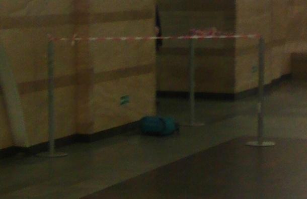 Станцию «Спасская» закрыли из-за бесхозного рюкзака