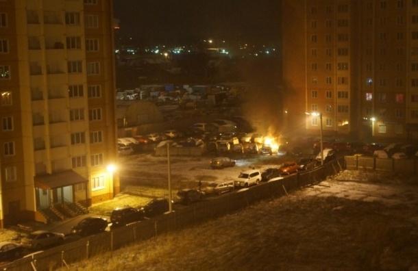 Массовый автомобильный пожар произошел в Горелово