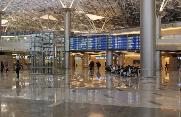 Пассажиров, летевших в Египет, высадили прямо во Внуково
