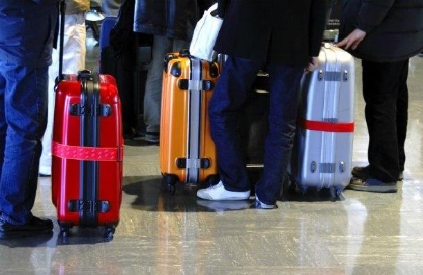 Номера рейсов, которые доставят багаж из Египта в Россию, опубликовали в Сети