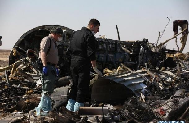 Версии крушения самолета в Египте не стали отвергать в СК