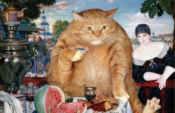 В саду Бенуа открылась выставка картин с котом Заратустрой