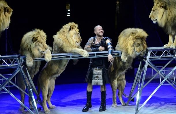 Хамада Кута: «У меня животные счастливы»