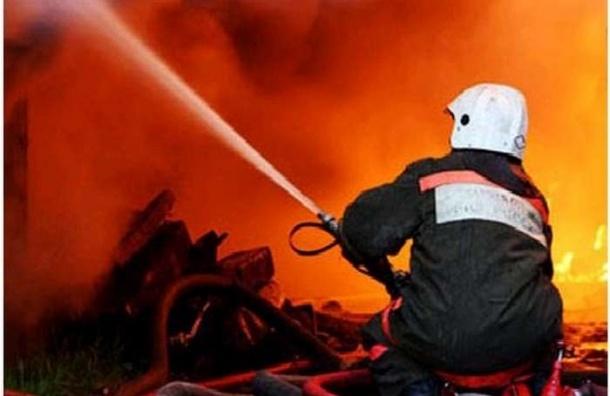 Четыре автомобиля сгорели за одну ночь у дома на Шаврова