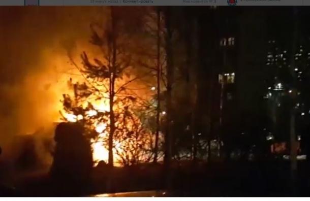 Два дорогих автомобиля сгорели в ночь на 9 ноября в Приморском районе