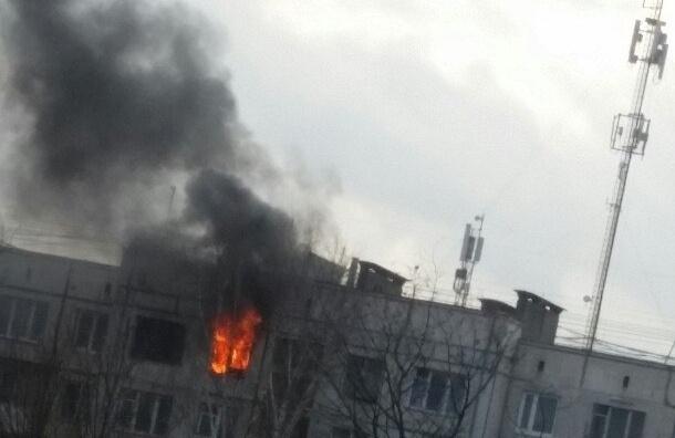 Мать трех малышей, погибших в пожаре на Крыленко, на неделю уходила в «загул»