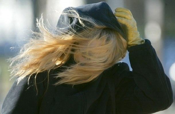 Сильный ветер обещают в Петербурге