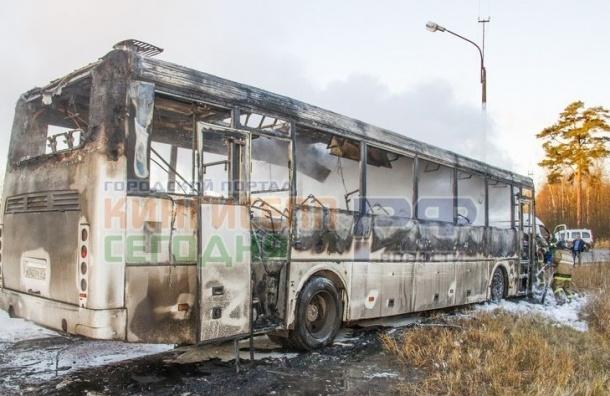 Женщина заживо сгорела в аварии автобуса и легковушки под Кингисеппом