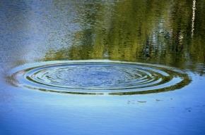 Пенсионер в пальто и джинсах утонул в реке Смоленке возле кладбища
