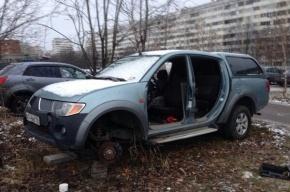 Автоворы подчистую «раздели» «Митсубиси» в Приморском районе