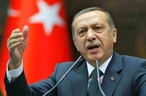 Эрдоган предложил Путину встретиться, ответа пока нет