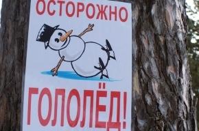 Гололедица ожидается в Ленинградской области