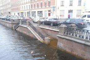 Набережную канала Грибоедова подтопило