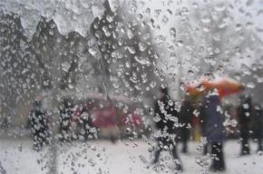 Мокрый снег и гололедицу прогнозируют в Петербурге 19 ноября