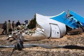 Часть тел погибших в авиакатастрофе в Египте обожжены на 90 процентов