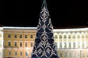 Елку на Дворцовой площади установят к 5 декабря