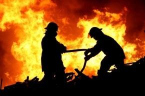 Пожар в Суворовском городке локализован