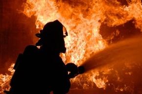Семь человек эвакуировали из горящего дома на Загребском бульваре