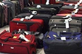 Более 40 тонн багажа российских туристов доставлено из Египта во Внуково