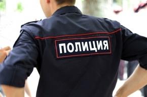 Полицейских избил житель Ленобласти у Дворца культуры