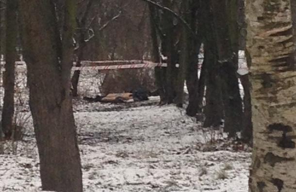 Труп без головы обнаружили на улице Ушинского