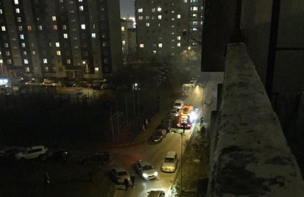 Женщина с собаками сгорела в квартире на Дунайском