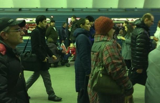 Поезда «синей ветки» задерживаются из-за задымления на «Петроградской»