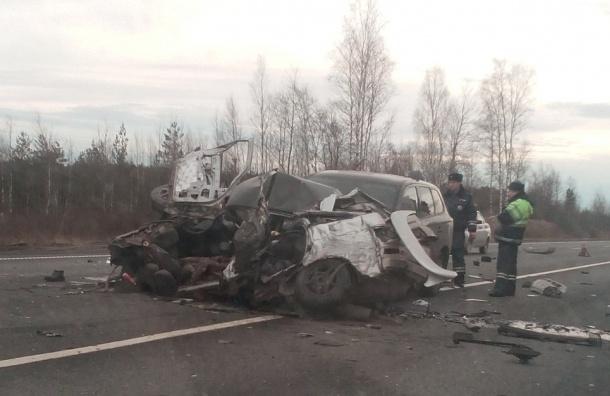 Очевидцы сообщают о жестокой аварии с погибшими на трассе М-10