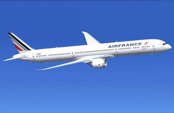 Бомбу нашли в самолете Air France, совершившего вынужденную посадку в Кении