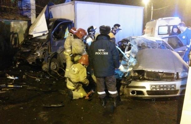 Пассажир Шкоды погиб в ДТП в Колпино