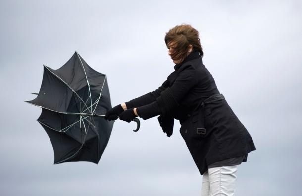 Сильный ветер продолжает бушевать в Петербурге