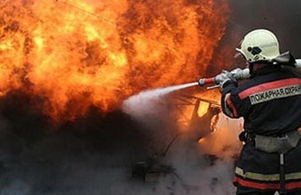 Жертвами пожара в Воронеже стали 23 пациента психдиспансера