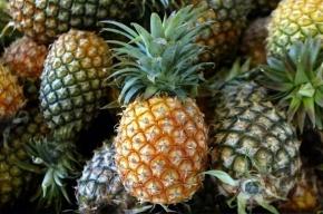 Груз с ананасами на 4 млн рублей похитили с овощебазы в Петербурге