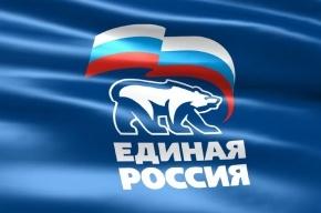 Тетердинко оставили врио руководителя исполкома Петербургского регионального отделения ЕР