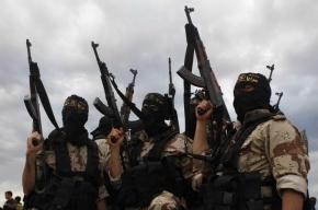 Боевики ИГ активизировались на Украине