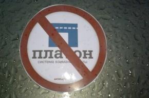 Сотрудники ДПС остановили колонну дальнобойщиков в Петербурге
