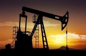 Глава Минфина считает, что нефть подешевеет до 30 долларов за баррель