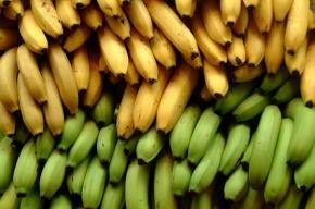 Фуру бананов угнали в Петербурге