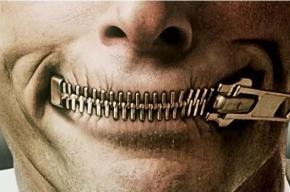 Уголовную статью за дискредитацию и очернение России предлагает депутат Госдумы
