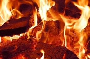 Девять элитных иномарок сгорело на Рублевском шоссе