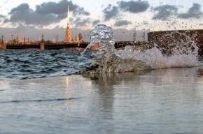 Чтобы избежать подъема воды ночью в Петербурге частично закрыли дамбу