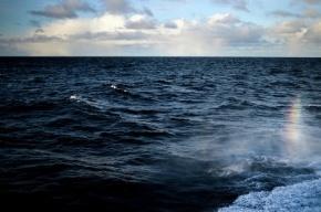 Межконтинентальную ракету испытали военные РФ в Баренцевом море