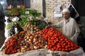 Египет предложил заместить в России своими товарами турецкие продукты