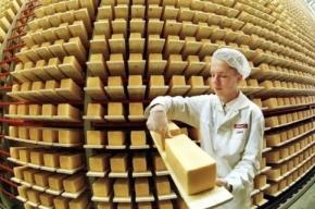 Санкционный сыр тайно спрятали в Петербурге вместо того, чтобы уничтожить