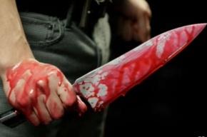 Школьница из Подмосковья зарезала своего отца после ссоры