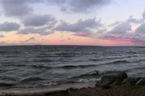 Молодая обеспеченная женщина утопилась в Финском заливе