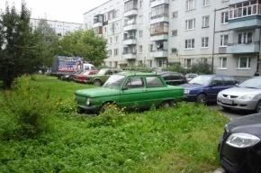 Петербуржцам разрешили парковаться на газонах